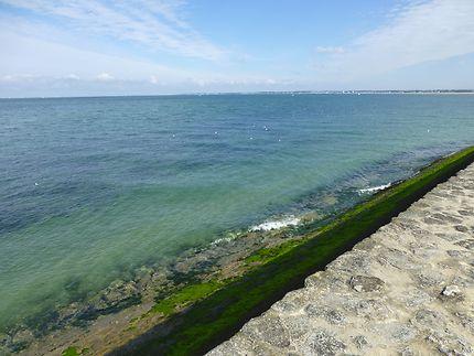 La mer oscille entre vert et bleu à La Turballe