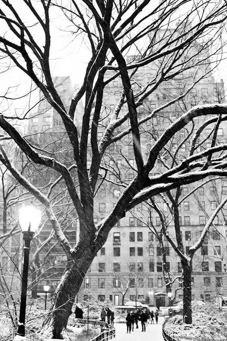 Chutes de neige sur New York