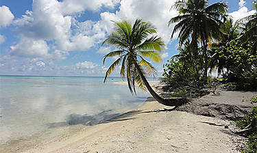 Rangiroa (archipel des Tuamotu)