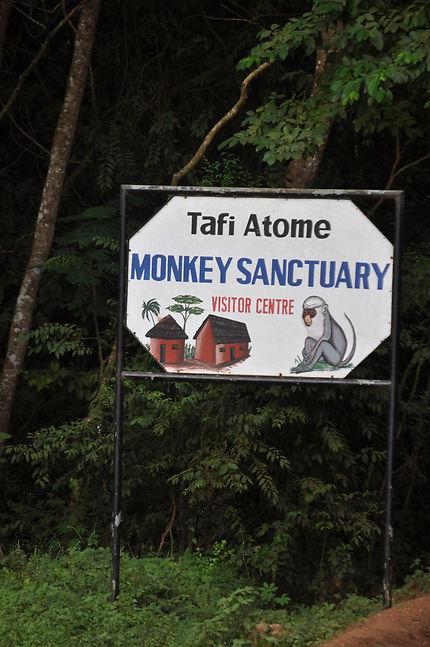 Ecotourisme: préservation des animaux