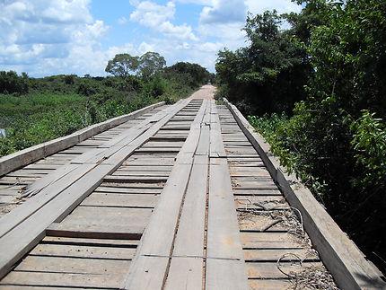 Dépaysement au Pantanal, Brésil