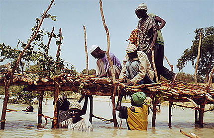 Le petit pont de bois de la rivière Sandougou