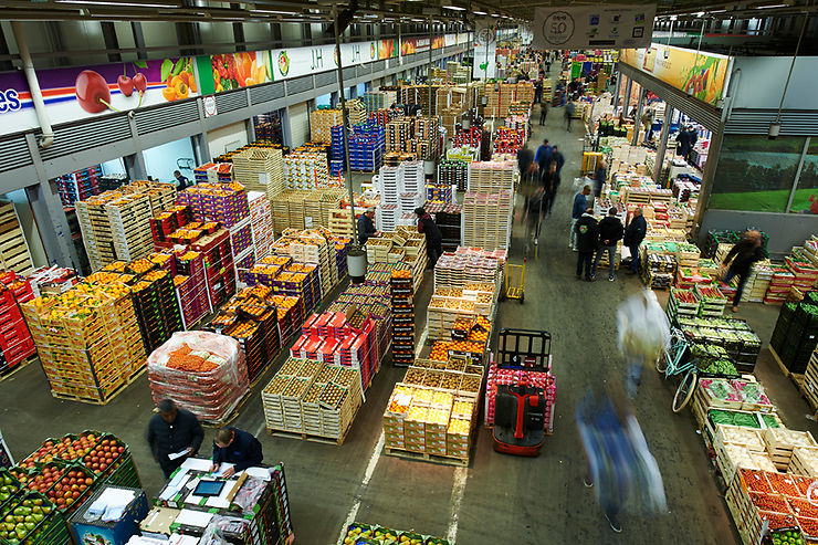 Une exploration gastronomique : le marché de Rungis