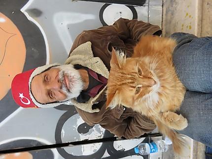 Amitiés hommes et chats de la rue