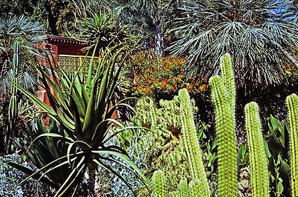 Jardin de Marrakech