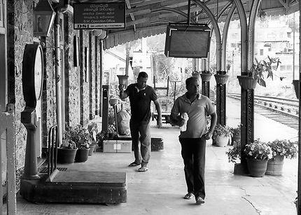 Le sonneur d'Haputale, Sri Lanka