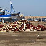 Filets de Pêche au repos