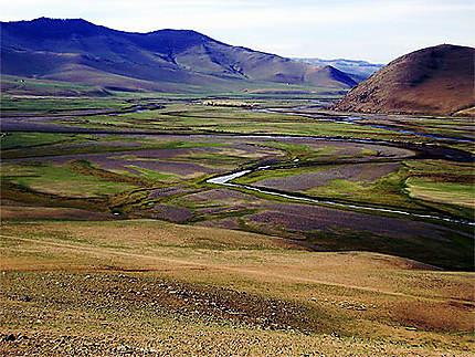 Paysage mongole