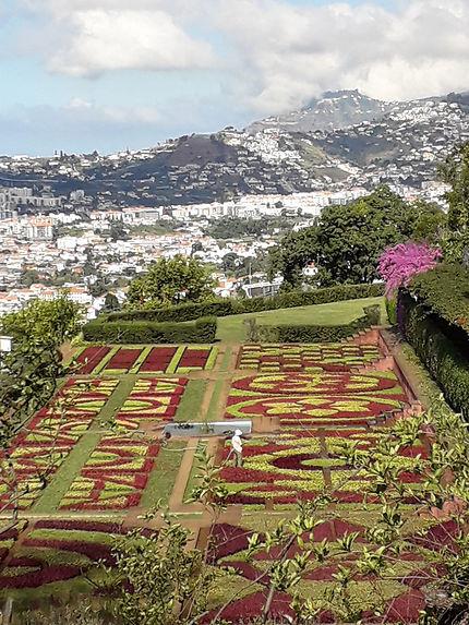 Jardin à Madère