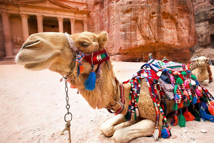 Jordanie : toutes les couleurs du Moyen-Orient