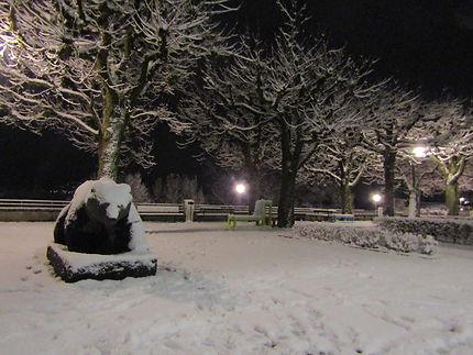 L'ours (blanc) de Berne