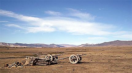 Immensité Mongole