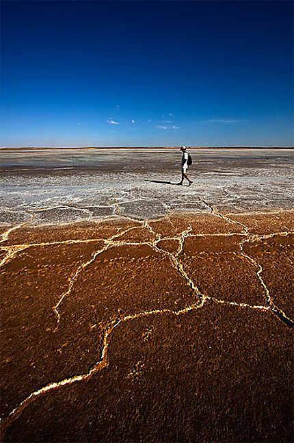 Sur une exploitation de sel
