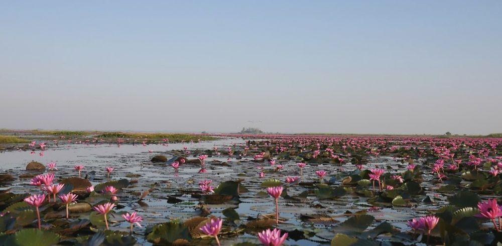 Road Trip dans l'ISAN au Nord Est de la Thaïlande