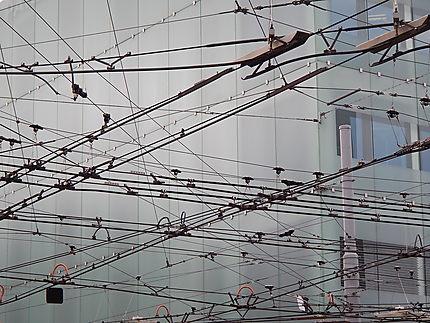 Esthétique des câbles de tramway
