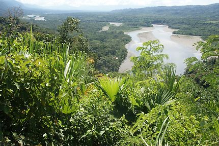 Rio Madre de Dios près d'Atalaya