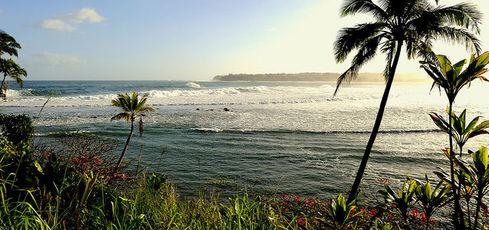 Retour sur 3 semaines à Hawaii