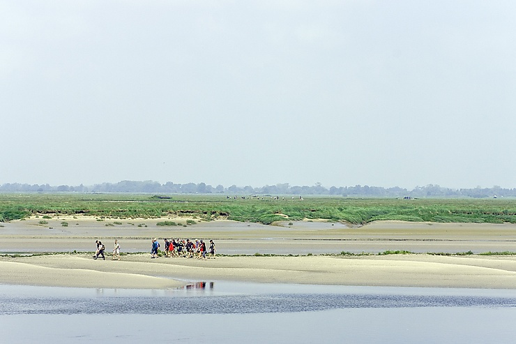 Baie de Somme (Somme)
