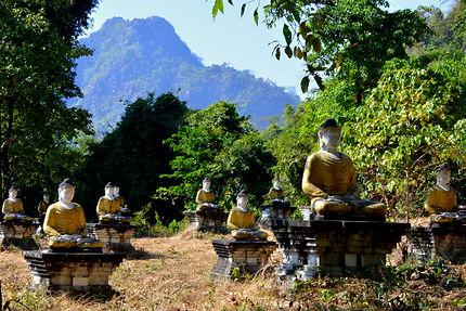 La vallée des boudhas