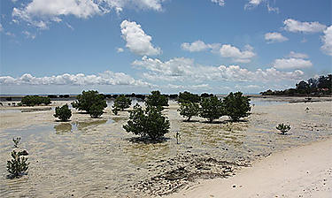 Îles Quirimbas