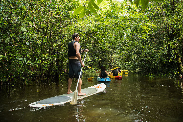 Guyane, terre d'aventure