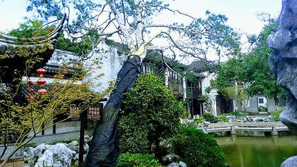 Remarquable  jardin chinois à Tongli, Chine
