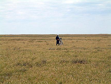 Cycliste dans l'immensité des steppes mongoles