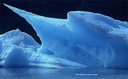 Mini icebreg du glacier de Portage