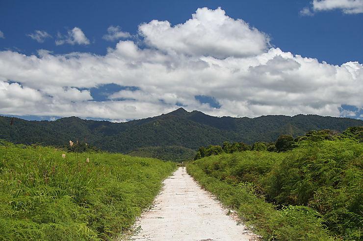 Du Shangri-La du Sarawak aux trésors de Sabah