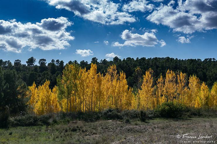 Couleurs d'automne, Espagne