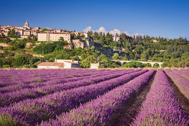 Sault : en Provence, au pays des lavandes