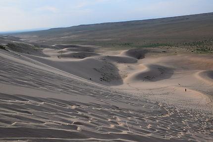 Dune Khongoryn Els