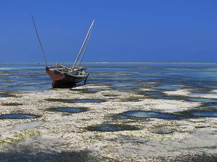 Marée basse à Matenwe