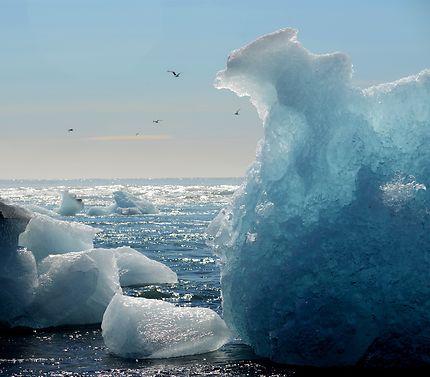 L'iceberg qui aimerait voler