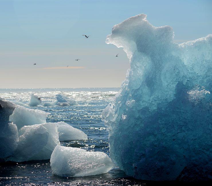 L'iceberg qui aimerait voler, Islande