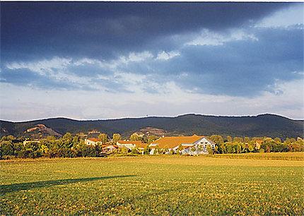 Paysage d'Heidelberg