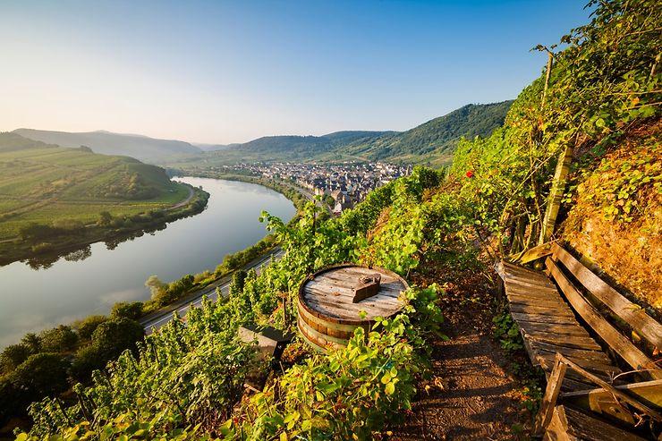 Allemagne - Des randonnées pour découvrir les vins allemands