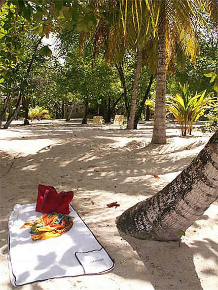 Ile de Mayreau (Grenadines)