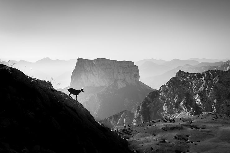 Au cœur du Vercors, Alpes