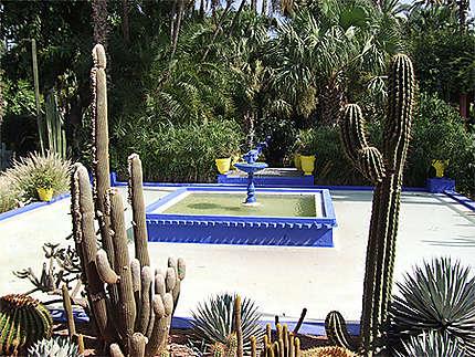 Jardin Majorelle Marrakech Maroc 2006