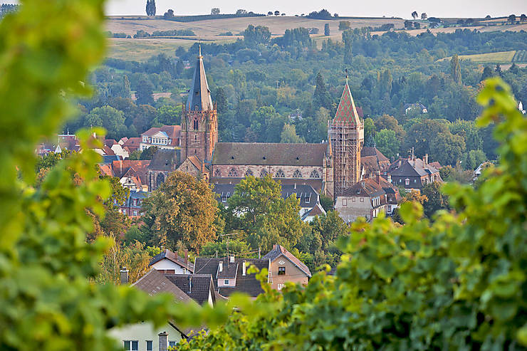 L'Alsace du Nord avec le Routard