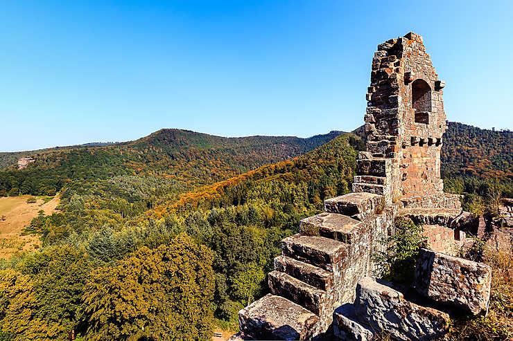 L'Alsace du Nord, entre tradition et authenticité