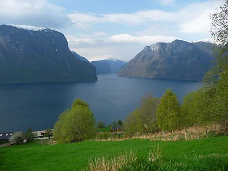 Camaïeu de saisons sur le Hardangerfjord