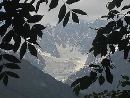 Glacier de Tchalati