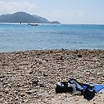 Great Reef Barrier