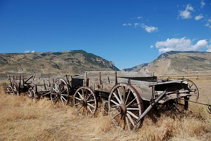 Chariots de Wyoming