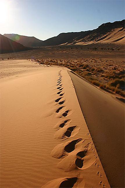 Dune au lever du soleil