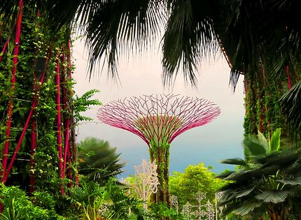 Les smarts cities : Gardens by the bay