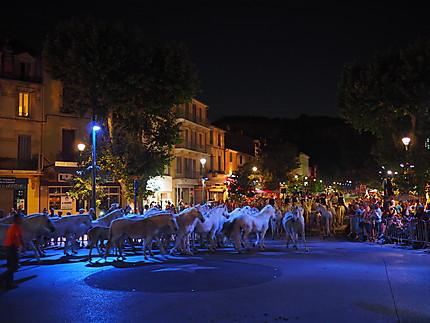 Feria du Melon de Cavaillon