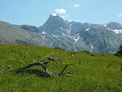 Brec du Chambeyron ( 3390 m )